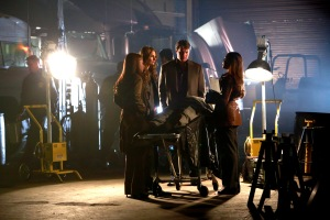 PENNY JOHNSON JERALD, STANA KATIC, NATHAN FILLION, TAMALA JONES